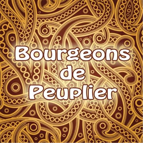 Bourgeons de Peuplier Label Graphic for WEB copy
